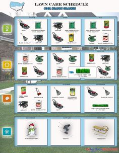 Lawn Care Schedule for Warm Season Grasses | Garden | Pinterest ...
