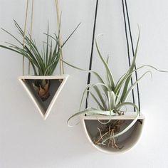 Air Plant Hangers by Elizabeth Benotti - Handmade Ceramics