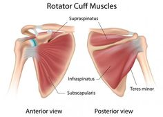 Avoid Shoulder Injury by Strengthening the Rotator Cuff | Breaking Muscle