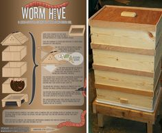 worm hive Homestead Revival: Inspiration Friday: 5 Achievable Goals for Every Urban Homestead Red Worms, Garden Compost, Worm Composting, Composting Toilet, Aquaponics System, Aquaponics Diy, Urban Homesteading, Hobby Farms, Small Farm