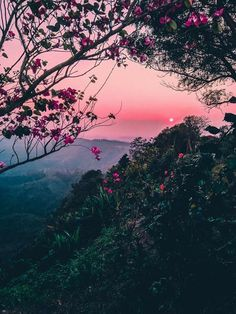 Post with 49 votes and 2256 views. Tagged with earthporn, wallpaper, landscape, beautiful world; Shared by Aztronomo. Sunset From Bandarban, Bangladesh. By u/GeorgeCrowned. Nature Aesthetic, Flower Aesthetic, Aesthetic Vintage, Aesthetic Backgrounds, Aesthetic Wallpapers, Iphone Wallpaper Tumblr Aesthetic, Landscape Photography, Nature Photography, Photography Ideas