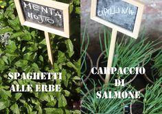 erbe aromatiche - aromatic herbs menta, erba cipollina