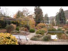 (23) Spaziergang durch die winterliche, verschneite Neu(Alt)-Stadt von Bad Kreuznach - YouTube Army Base, Alter, World, Youtube, Plants, Outdoor, Old Town, Outdoors, The World