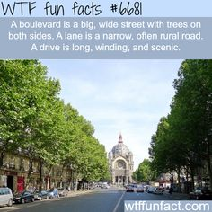 The difference between a road, boulevard, and lane - WTF fun fact