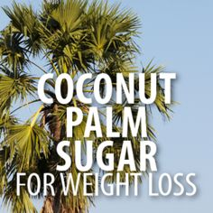 Dr Oz: Coconut Palm Sugar Weight Loss & Blood Sugar Stabilization
