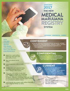 Flyer for new Colorado medical marijuana registry system-page Health Infographics, Medical Marijuana, Public Health, Behavior, Colorado, How To Apply, Behance, Aspen Colorado, Skiing Colorado