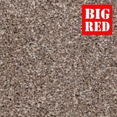 Pebble | Majesty Gold: Kingsmead Carpets - Best prices in the UK from The Big Red Carpet Company