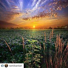 #Repost @ramikantari with @repostapp  #Repost @hijiri_kouya with @repostapp.  素敵な一日をお過ごしください #Repost @edaccessible with @repostapp.  Horizons Wisconsin ... by Phil Koch via @andresfsilvaa  #love #TagsForLikes #TFLers #tweegram #photooftheday #me #instamood #cute #iphonesia #fashion #summer #tbt #igers #picoftheday #food #instadaily #instagramhub #beautiful #girl #iphoneonly #instagood #bestoftheday #jj #sky #picstitch #follow #webstagram