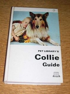 "RARE COLLIE DOG BOOK BY YOUNG 1ST 1969 ""COLLIE GUIDE"" 250 PAGES COLLIES"