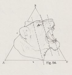 Figure 56 By Peter Carrington