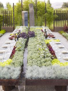 Future Feast : A Hybrid Between Your Garden and Your Patio Table
