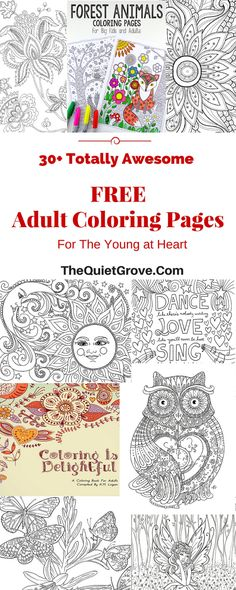 Life Hacks : 30 totally awesome Free Adult Coloring Pages Giraffe Coloring Pages, Butterfly Coloring Page, Fairy Coloring Pages, Free Adult Coloring Pages, Printable Coloring Pages, Coloring Books, Free Coloring Sheets, Kids Coloring, Giraffe Colors
