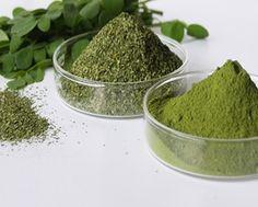 Benefits of Moringa Moringa is one of the most powerful health-enhancing plants…