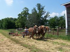 Agritourism in Illinois and Indiana