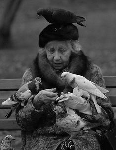 This beautiful black and white photograph features an old lady feeding the birds while seated on a park bench.