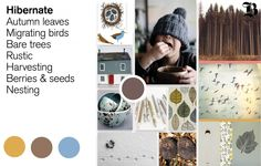 Beautiful colors and concepts for fall kid's design