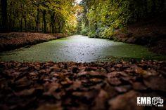 Natuur in Bergen  by EMR Photography