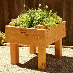 Farmer D Cedar Bed-on-legs Kit, 2' X 2'