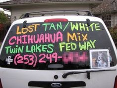 """""""Try tagging your car to get out the word about a lost pet! """"Recovering a lost dog is all about launching a very visible marketing campaign. Tagging is a process of using florescent window markers to market your lost dog as you drive through your community."""" Seattle Pet Detectives   Missing Pet Partnership #lostpettips #tagging #missingpets http://www.missingpetpartnership.org"""