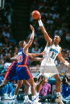 201 Best Alonzo Mourning images in 2019  460d73f36