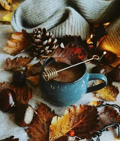 Flatlay Inspiration · via Custom Scene · perfect autumn drink