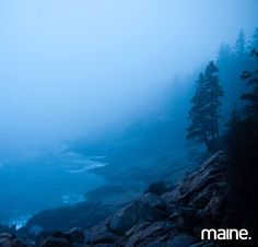 At dusk in Acadia National Park a view from the shore path at Blackwoods Campground. Photo taken by Peter Frank Edwards, freelance photographer for @themainemag - regram from @themainemag