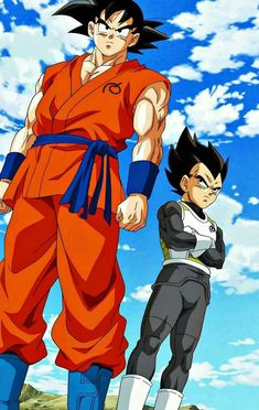 Goku & Vegeta - Dragon Ball Super