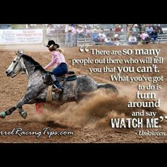 Does YOUR barrel horse have what it takes to succeed? Winning in today's barrel racing world requires a high degree of equine talent, and more. Rodeo Quotes, Equine Quotes, Cowboy Quotes, Cowgirl Quote, Equestrian Quotes, Cowgirl And Horse, Horse Love, Horse Sayings, Senior Quotes