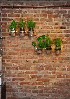 www.zoldlevego.hu Distinction iroda növénydekoráció. Raklapdeszkára erősített csőbilincsbe fogattuk a befőttes üvegeket és ezekbe ültettünk fűszernövényeket.