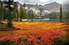 Rob Hart: Alpine Lake in the Sawtooth Mountains, Idaho Bryce Canyon Utah, Sawtooth Mountains, Perfect Road Trip, Valley Of Fire, Us Road Trip, Alpine Lake, Us National Parks, Sierra Nevada, Idaho