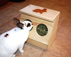 Bunny Rabbit Hay Feeder on Etsy Rabbit Feeder, Hay Feeder, Rabbit Toys, Bunny Rabbit, Bunny Toys, Custom Woodworking, Woodworking Projects Plans, Bunny Cages, Rabbit Cages