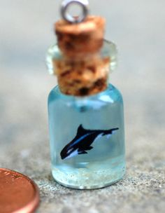 Tiny Orca or Killer Whale in Tiny Glass Bottle by BottledUpShop