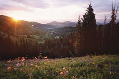 Biking and hiking guide for 400 miles of trails in Park City, Utah.