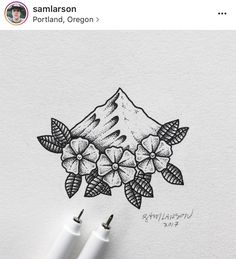 Sam Larson mountains and flowers drawing