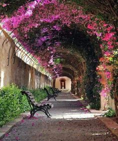 "The ""love tunnel"" in Los Jardines de Monforte in Valencia, Spain."