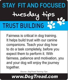 Trust building - what it's all about x