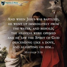 And when Jesus was baptized, he went up immediately from the water, and behold, the heavens were opened and he saw the Spirit of God descending like a dove, and alighting on him... Matthew 3:16