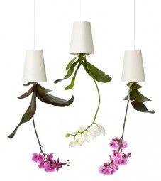 Jetzt anschauen:Pflanzgefäß Sky Planter Keramik von Boskke