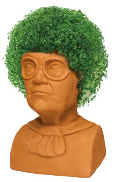 Chia Pet Images : images, Ideas, Chia,, Pottery, Planters