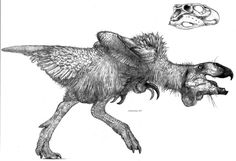 Pteronychus by Monopteryx on DeviantArt