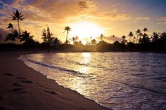 Surf and Landscape Photography from Hawaii by Dezign Horizon