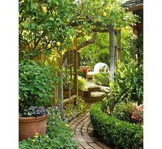A mature lemon tree, potted herbs and a sunny patio to sip tea on–this garden harks on the laid-back vibe of Northern California.