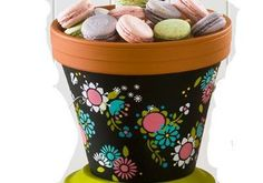 Handmade Charlotte Bohemian Garden Party Pot and Stand
