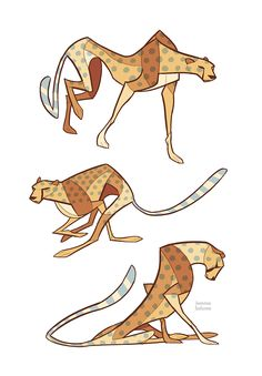 Studies - Cheetah by *oxboxer on deviantART Find more at https://www.facebook.com/CharacterDesignReferences if you ar looking for: #art #character #design #model #sheet #illustration #best #concept #animation #drawing #archive #library #reference #anatomy #traditional #draw #development #artist #animal #animals #felines #cats #cat
