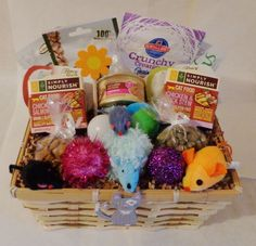 Custom treat baskets for pets. Cat or kitten gift basket.
