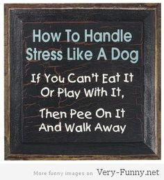 funny sayings about stress » Funny pictures, Funny Quotes, Funny Jokes