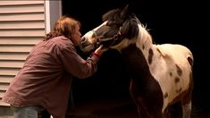 Missing Pony Finds his Way Home in the Poconos  ||  TUNKHANNOCK TOWNSHIP,Pa. -- Community members in one part of the Poconos spent the last two days looking for a pony in the woods near Long Pond.  The search for Max came to a happy end Monday afternoon.  Rose Marie Swain from the Long Pond area wishes…