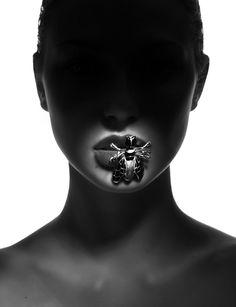 jewelry photography in studio #fashion bug