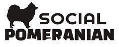 Contact Us - Social Pomeranians