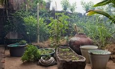 Permaculture in Mala